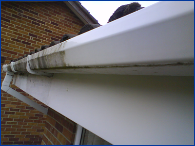 Fascias & Soffits Cleaning